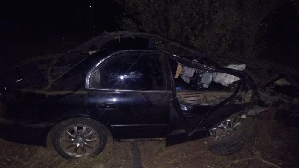 Водитель «Хендая» сбил лошадь и оказался в больнице