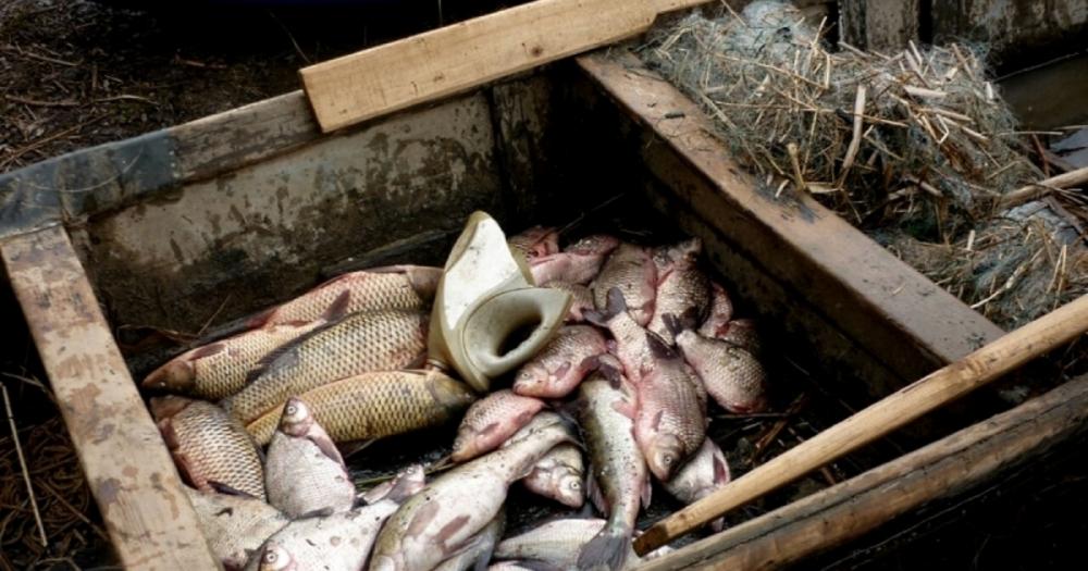 Волгодонцам рассказали где, когда и чем нельзя ловить рыбу