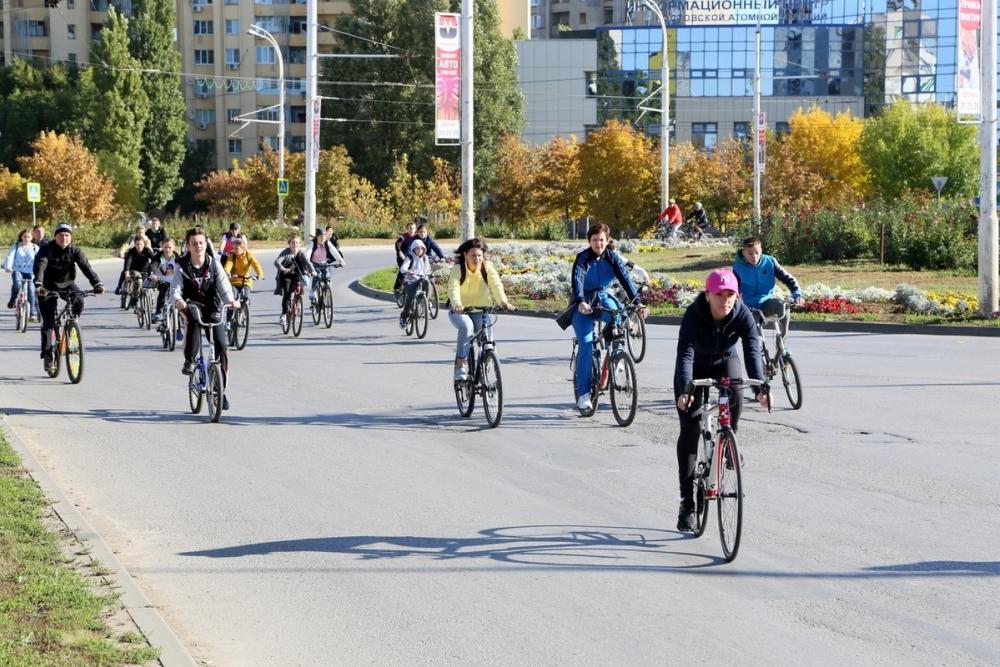 Волгодонцам предлагают добраться на работу пешком или на велосипеде