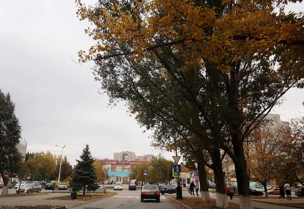Облачно и достаточно тепло будет сегодня в Волгодонске