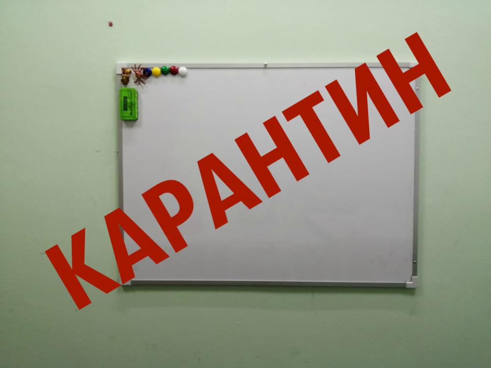 На карантин закрыли шесть классов в трех школах Волгодонска