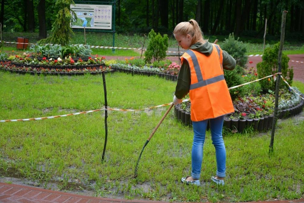 В Волгодонске зафиксировали нарушения трудовых прав детей