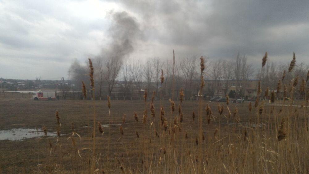 На берегу залива в Волгодонске бушует пожар, - читательница