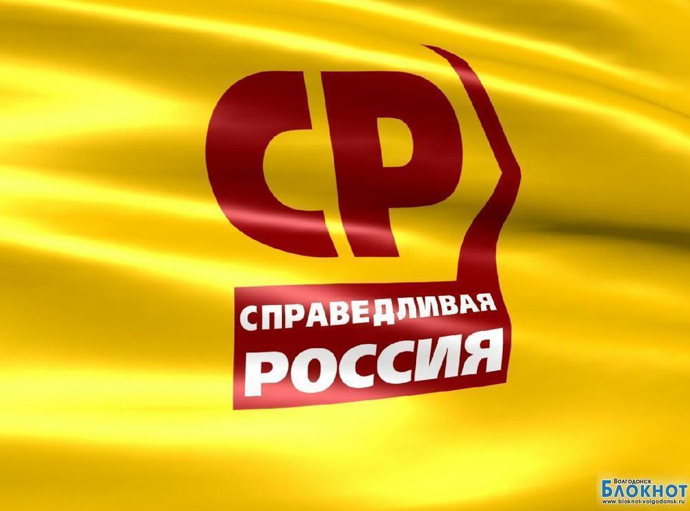 «Справедливая Россия» собирает подписи против отмены льгот на проезд