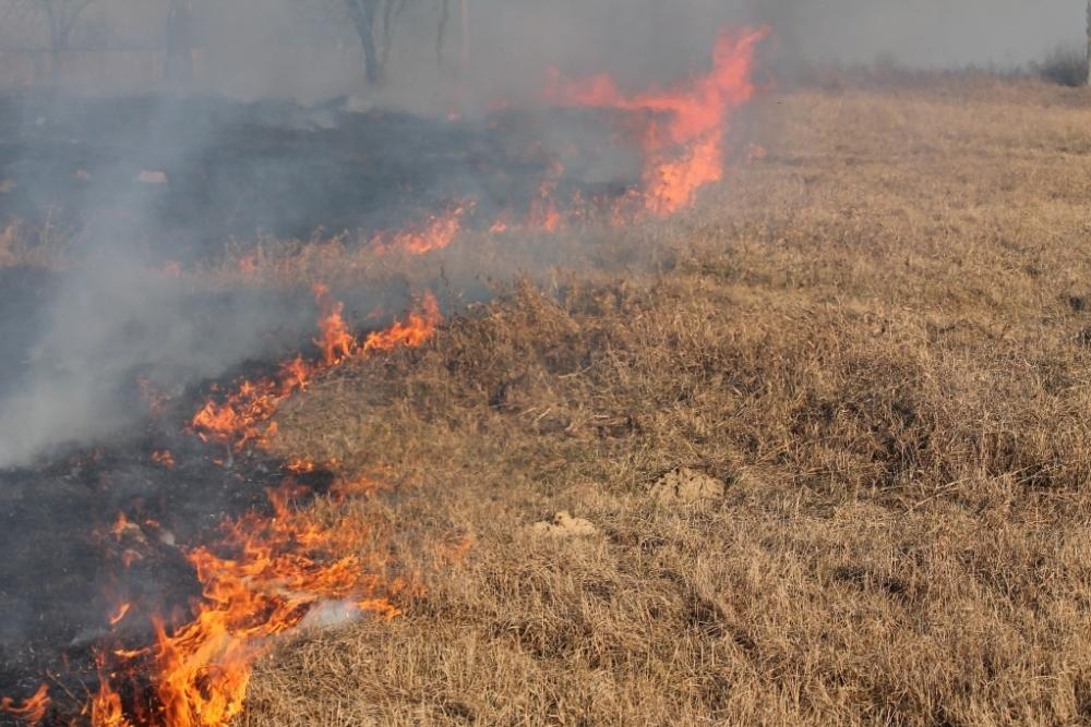 Возле жилых домов на Песчаной разгорелся пожар