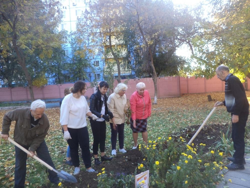 Активисты высадили цветочную аллею в пансионате для престарелых