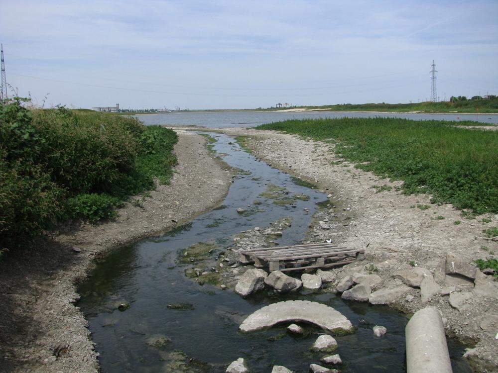 За 11 дней уровень Цимлянского водохранилища упал на 16 сантиметров
