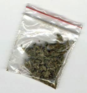 На Цимлянском заливе поймали безработного с марихуаной