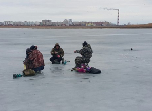 Преждевременный старт навигации уничтожит нерестилища в Цимлянском водохранилище, — ученые