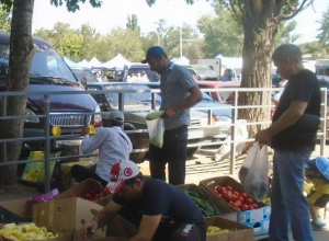 Муниципальная инспекция вновь выписала штрафы за незаконную торговлю на улицах Волгодонска
