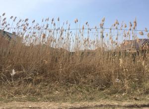 В Волгодонске жители обеспокоены пожароопасностью