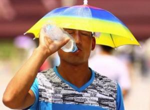 Пик жары лета-2017 наступил в Волгодонске
