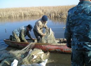 Браконьеру из Волгодонска грозит до пяти лет тюрьмы за ловлю раков и рыбы