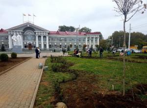 В Волгодонске высадили более 2000 деревьев и кустарников