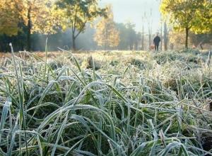 Придут ли заморозки в Волгодонск: МЧС предупреждает о возможном похолодании на Дону