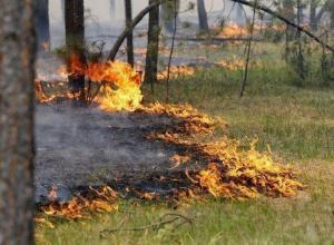 Август в Волгодонске обещает быть жарким и пожароопасным