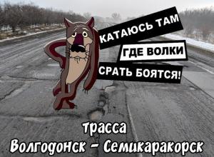 В соцсетях высмеяли трассу «Волгодонск-Ростов» мемом про дороги, на которых бояться испражняться даже дикие животные