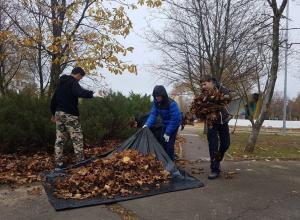 Рекордное количество человек вышли на уборку сквера «Дружбы» и парка Победы в Волгодонске