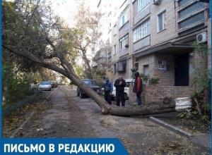 Летающие тарелки и падающие деревья: как Волгодонск переживает ураганный ветер