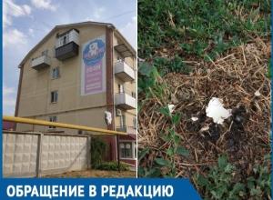 Я попала под обстрел яйцами, - волгодончанку с балкона закидали куриными яйцами