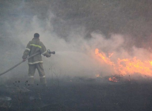 Пытаясь спасти пчел из огня погиб мужчина под Волгодонском