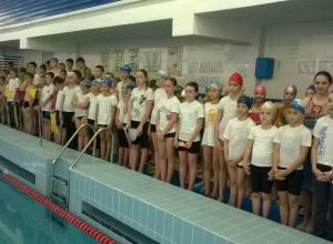 Юные пловцы установили новые рекорды Волгодонска