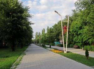 Почти три миллиона рублей потратят в Волгодонске на посадку цветов и оздоровление зеленого массива в парке Победы