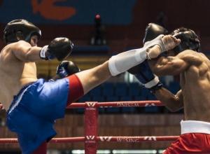 Спортсмены из Волгодонска отправятся в Сочи на соревнования по тайскому боксу