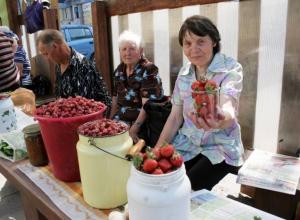 Продавцов не станут выгонять с улиц Волгодонска