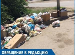 Жители улицы Степной в Волгодонске зарастают мусором из-за отсутствия контейнеров