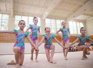 Триумфальной победой волгодонских гимнасток закончились соревнования по художественной гимнастике