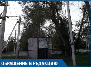 """Жители Красного Яра называют «бомбой замедленного действия""""опасное дерево"""