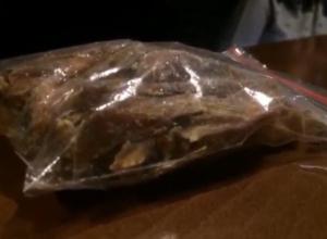 Кишащих тараканов в упакованной сушеной рыбе сняли на видео посетители пивбара в Волгодонске