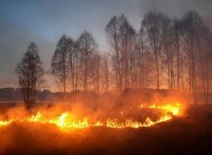 Волгодонцам напоминают о чрезвычайной пожароопасности в регионе