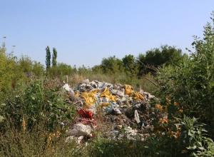600 тонн «советского» мусора чиновники Волгодонска намерены вывезти до конца года