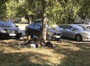 В Волгодонске во дворе по улице Энтузиастов устроили свалку под деревцем
