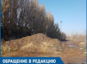 Администрация Волгодонска занимается беспределом, - возмущенный мусорной свалкой читатель