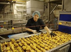 Азовские чипсы и сухарики обошли машиностроителей Волгодонска