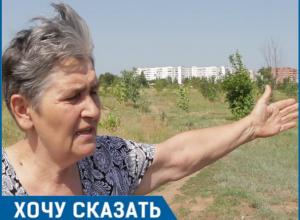 Мне стыдно перед погибшими, - пенсионерка из Волгодонска о состоянии аллеи Победы в парке «Молодежный»