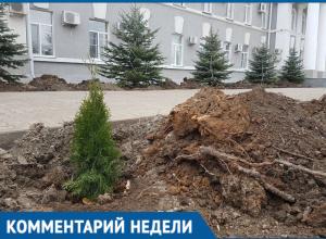 «Не фонтан» и мелкие туи возле администрации вызвали недоумение волгодонцев