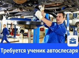 На СТО требуется ученик автослесаря по ремонту ходовой