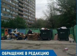 Бродячие животные растаскивают мусор по двору, - волгодонцы о свалке во дворе по проспекту Строителей