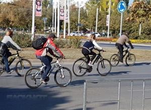 «На работу на велосипеде»: спортсмены и экологи Волгодонска предлагают поддержать всероссийскую акцию