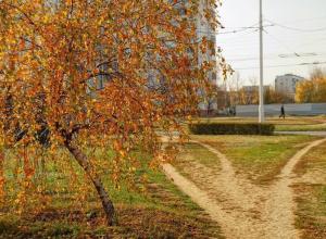 Солнечную субботу волгодонцам может подпортить сильный ветер