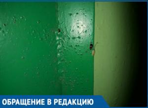 Подъезд дома №45 по проспекту Строителей стал похож на тараканью ферму, - волгодонцы
