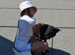«Делай добро!»: на площади Победы состоялась благотворительная акция