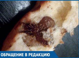 Девушка нашла плод зобовидного дурнишника в выпечке популярной булочной Волгодонска