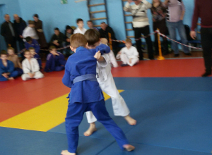 Волгодонские дзюдоисты стали первыми на областном турнире