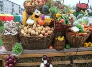 Производителей Волгодонска и близлежащих районов пригласили представить свои товары на ярмарке