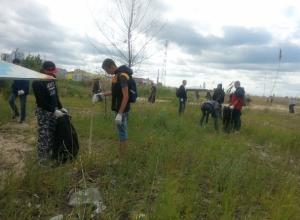 В уборке береговой зоны Цимлянского водохранилища были привлечены студенты и волонтеры